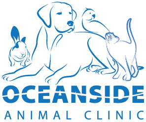 Oceanside Animal Clinic - Seaview, WA
